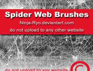 蜘蛛丝蜘蛛网效果画笔下载