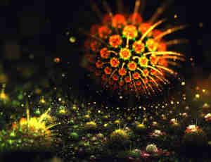 10张超美的3D艺术植物图像
