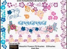 美丽的彩色花纹系列笔刷