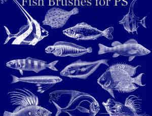 海洋怪鱼笔刷