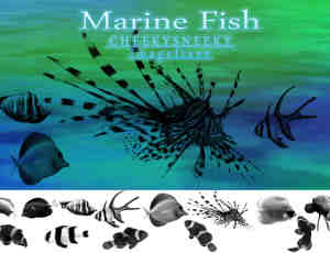 海洋鱼类笔刷套装下载