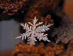 12个精彩的雪花微距摄影照片
