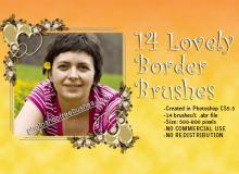 14种碎花照片边框装饰笔刷