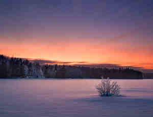 10张冬日的恩赐美景照片