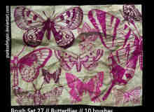 漂亮的印刷式蝴蝶笔刷