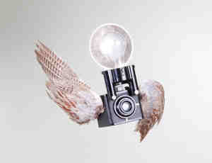 9个长翅膀的老旧相机