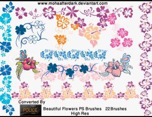 漂亮甜美的22个矢量花卉笔刷