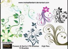 漂亮的漩涡式鲜花树枝花纹笔刷