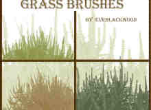 植物青草草丛素材笔刷
