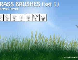 各类Photoshop野草植物笔刷