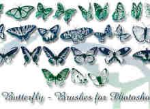 漂亮的蝴蝶花纹笔刷