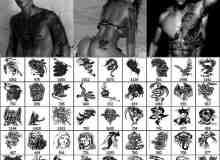 性感人体纹身纹饰笔刷下载