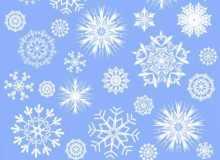 漂亮的雪花花纹笔刷