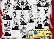 漂亮的蜗牛花纹装饰PS印花笔刷