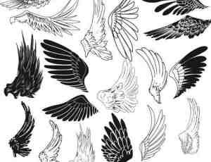 新款手绘神话卡通PS天使羽毛翅膀笔刷
