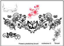 矢量花朵花边花纹PS装饰笔刷下载#.3