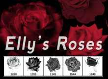 真实的血红玫瑰花PS笔刷素材下载
