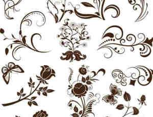 漂亮的玫瑰花、兰花、雏菊植物鲜花花纹PS笔刷