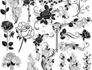 22种漂亮的手绘玫瑰鲜花植物花纹PS笔刷下载
