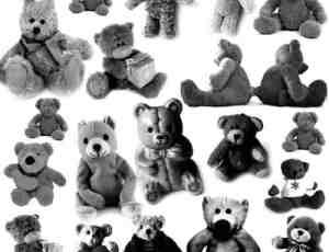 可爱真实的泰迪小熊PS笔刷下载
