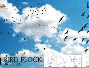 天空中飞翔的鸟群PS笔刷 #.1