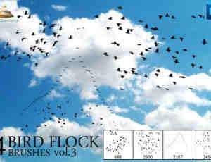 天空中飞翔的鸟群PS笔刷 #.3
