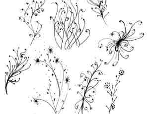 手绘植物嫩条、枝条花纹PS笔刷