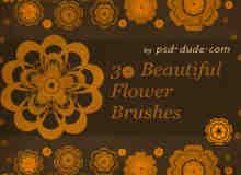 矢量花朵、鲜花花纹PS笔刷