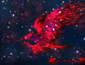 火焰式雄鹰、老鹰纹饰效果PS笔刷