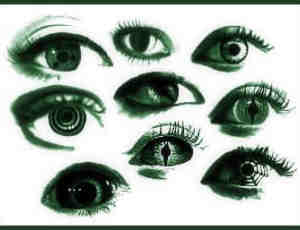 女性的眼睛Photoshop笔刷素材