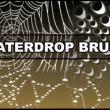 蜘蛛网、蜘蛛丝效果Photoshop笔刷素材