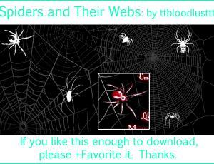 恐怖蜘蛛与蜘蛛网效果photoshop笔刷素材