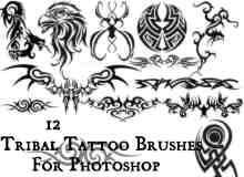 纹饰图案装饰、火焰炫纹、雄鹰纹饰photoshop笔刷素材