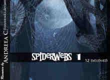 真实的蜘蛛网素材PS笔刷