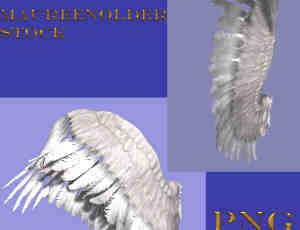 两对圣洁的天使侧翼天使翅膀美图秀秀、可牛影像素材