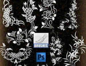 典雅漂亮的植物艺术花纹photoshop笔刷素材