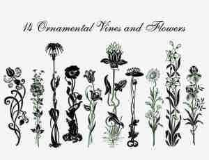 手绘植物鲜花、植物藤蔓图案photoshop笔刷素材