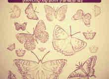 复古式蝴蝶图案photoshop笔刷素材
