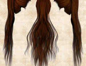 长发女式头套美图秀秀png素材下载