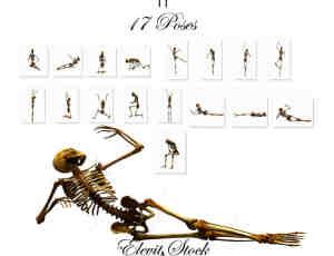 17种各种姿势的骷髅人骨骼造型美图秀秀Png素材下载 #.2
