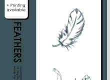 漂亮的手绘线条鹅羽毛PS笔刷素材
