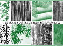真实的毛竹、手绘竹子photoshop笔刷素材