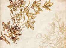 古典式手绘玫瑰花纹图案photoshop笔刷素材
