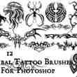 严谨漂亮的老鹰纹饰、火焰纹身、神秘纹饰图案photoshop笔刷素材