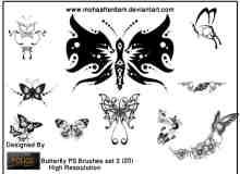 漂亮的蝴蝶花纹艺术photoshop图案笔刷素材