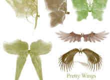 漂亮的手绘蝶翼翅膀、羽翼翅膀photoshop笔刷下载
