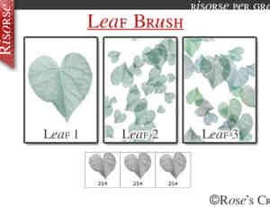 简单的叶子、绿叶、树叶photoshop笔刷素材