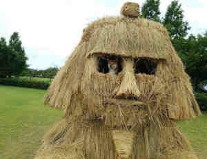 专属你的乐趣,日本稻草艺术节展览