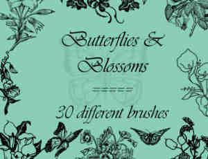 漂亮的植物与玫瑰花蝴蝶图案PS笔刷素材