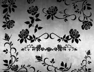 免费的玫瑰艺术植物花纹photoshop笔刷素材下载